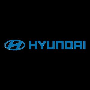 Kooien voor Hyundai klik hier