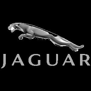 Kooien voor Jaguar klik hier